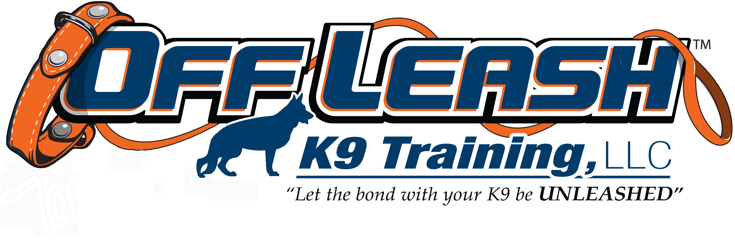 Portland Maine Offleash K9 Dog Training